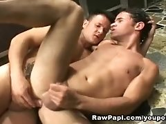 Latin Lovers Loves Fucking